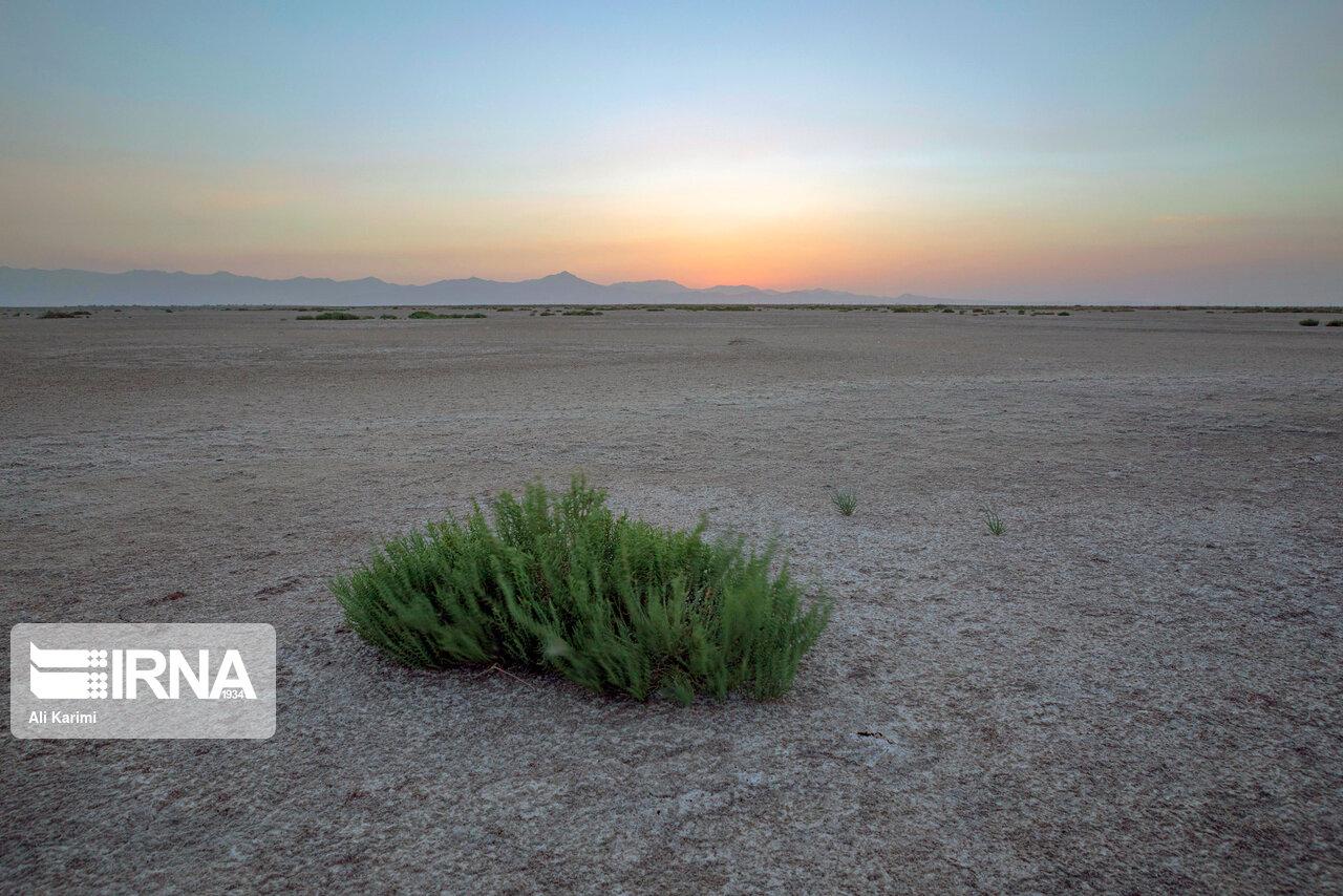 حدود ۵۹ درصد پهنه خراسان شمالی درگیر خشکسالی است,خراسان شمالی+بجنورد+خشکسالی+مهدی کمالی+هواشناسی