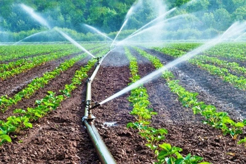 تورم و کمبود اعتبارات تجهیز سطوح کشاورزی به سیستم نوین آبیاری را کند کرد/راندمان آبیاری فقط 9.5 درصد ارتقا یافت,