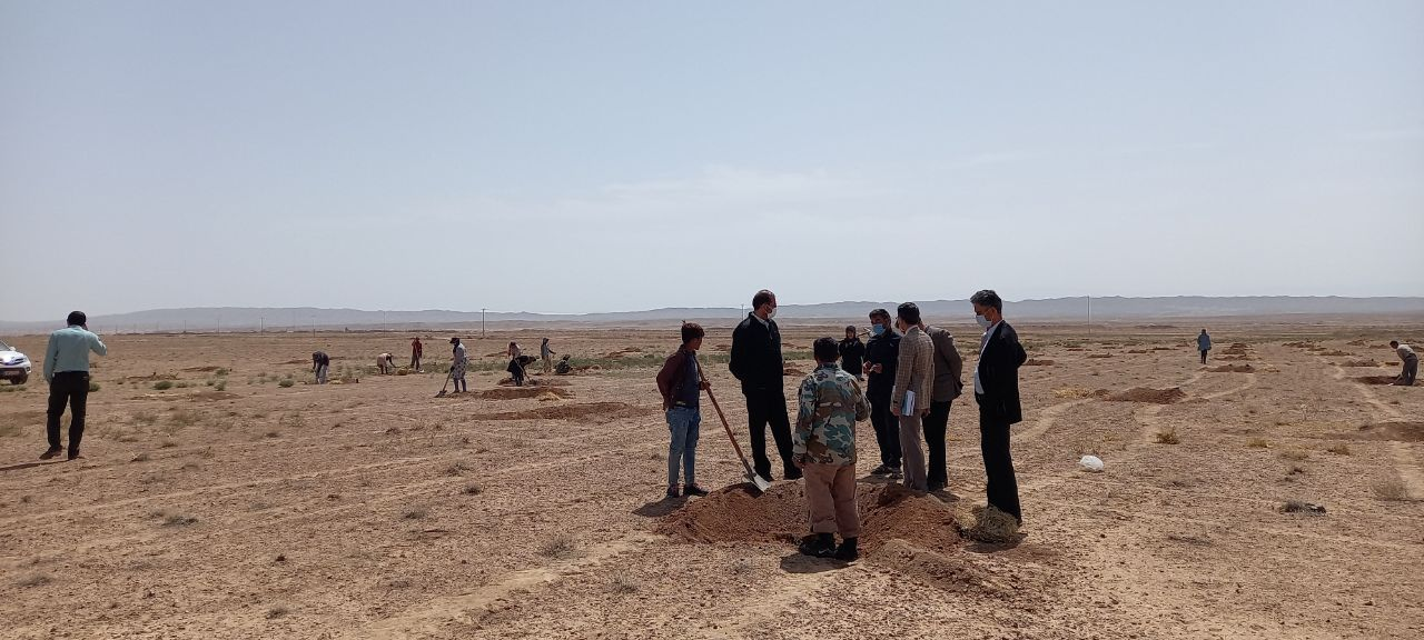 اجرای 1500 هکتار پروژه بیابان زدایی در اسفراین
