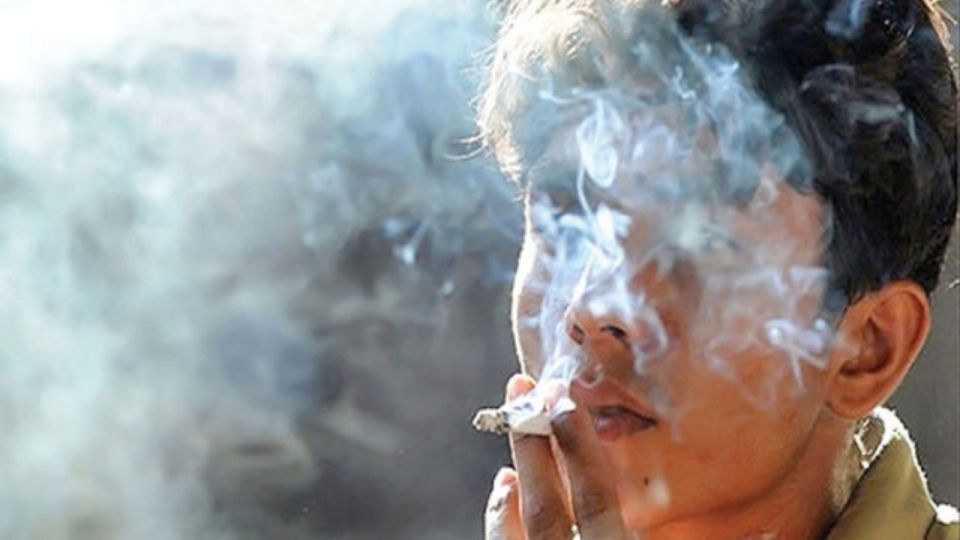 افزایش مصرف گل در بین جوانان و نوجوانان