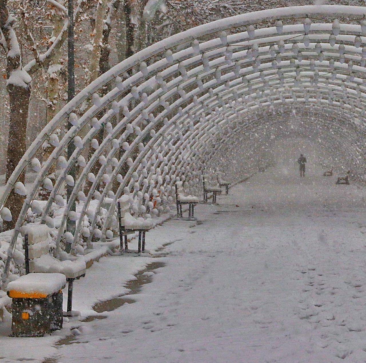 ردای سفید برف بر تن بجنورد|2834137
